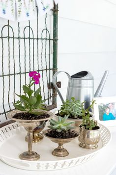 DIY Summer Porch Decor Ideas   Tabletop succulent garden plus ideas for making your outdoor spaces function like indoor rooms. Examples, tips and inspiration!