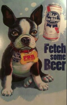 Not a fan of PBR but I doggie that can bring me beer...heck ya