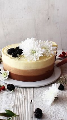 Dark chocolate, milk chocolate, and white chocolate combined into one delicious cake. Dark chocolate, milk chocolate, and white chocolate combined into one delicious cake. Sweet Recipes, Cake Recipes, Dessert Recipes, Food Cakes, Cupcake Cakes, Chocolate Desserts, Cake Chocolate, Beautiful Chocolate Cake, Chocolate Videos
