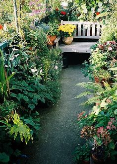 Image result for english garden on balcony