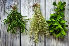 Some of your herbs will continue growing in winter. Juliet explains which herbs are worth keeping an eye out for and how to look after them over the cold season