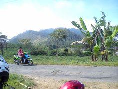 1 September 2013 Lereng gunung Sumbing, Jawa Tengah