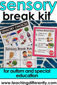 Autism Activities, Teaching Activities, Sensory Activities, Sensory Tubs, Sensory Rooms, Autism Resources, Images Pecs, Special Education Behavior, Physical Education