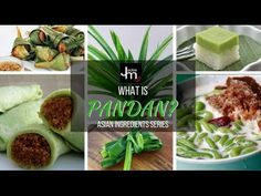 In this Live broadcast Jackie M talks about Pandan in its various forms - what is pandan how to use it etc.  Subscribe for more Asian cooking tips recipes and secrets: http://www.youtube.com/subscription_c...  ================================================= Make sure not to miss a single video from Jackie M - Click here to subscribe: http://www.youtube.com/subscription_c...  Jackie M  Southeast Asian Street Food Specialist http://jackiem.com.au/ http://ift.tt/2cZISdL  http://ift.tt/2crQmkH…