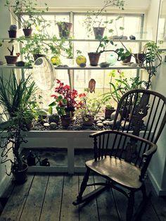 Kettles Yard window shelves.