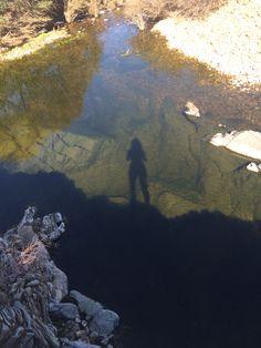 Reflection, fuentes de la Jara, rio huso, rio tajo, toledo, spain
