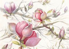 """This artwork is called """"Spring has come!"""", it's 24x31,5'(60X80cm), watercolor pencils on Backingford paper. 1. This series of botanic illustrations are drawn accurately in a rich palette. They are tiny but eye -catching and look nice in interior. 2. This artwork is framed in a wooden frame, shown in the photo. However If you would like to have it unframed to cut the delivery cost, please, let me know. 3. I've attempted to adjust the color as accurate as I possible. However it might differ…"""