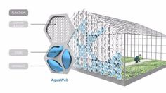 NexLoop unveils water management system inspired by spiders, fungi, bees and plants