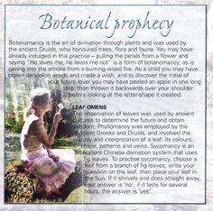Botanical prophecy
