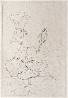 How To Paint Realistic Watercolor Roses by caitlin #watercolorarts