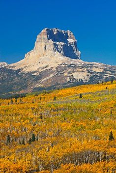 bright fall colors in glacier national park, chief mountain, montana, crown of the continent Glacier National Park Montana, Glacier Park, Big Sky Montana, Montana Living, Montana Homes, Scenery Pictures, Autumn Scenes, Big Sky Country, Beautiful Landscapes