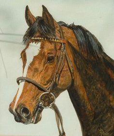 'Mtoto' in watercolours #racehorse #racehorses #thoroughbred #thoroughbredsofinstagram #thoroughbreds #horse #horseportrait #horses #horseart #horseartist #equestrian #equestrianart #equine #equineportraits #watercolour #watercolours