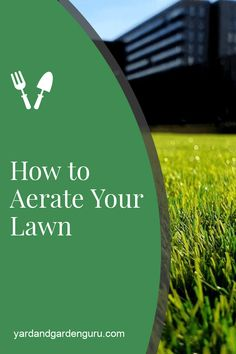 how to aerate your lawn and have the greenest grass on the block. In this guide we show you the best way to aerate your lawn.