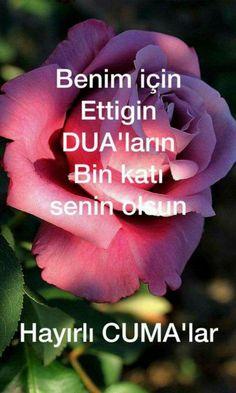 Allah, Poems, Diy Crafts, Mood, Flowers, Nara, Instagram, Quotation, Background Images