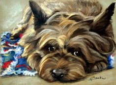 Waiting On the Wizard Cairn Terrier Portrait To commission a painting of your pet contact the artist Mary Sparrow at hangingthemoon@gmail.com