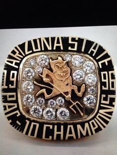 UofA - this is what one of these looks like
