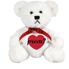 097243395a3 A custom teddy bear is a cute way to ask someone to prom Customized Girl