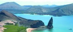 Image result for galapagos islands animals