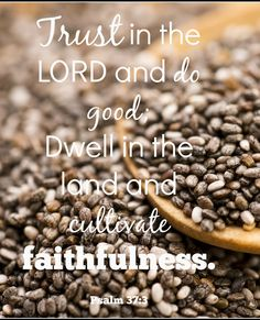Do you want a spiritual harvest in your life? This post will inspire you to cultivate faithfulness TODAY for a spiritual harvest tomorrow.
