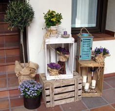 composición con plantas y materiales reciclados
