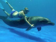 Swim with dolphins! Done! Nuevo Vallarta, Mexico