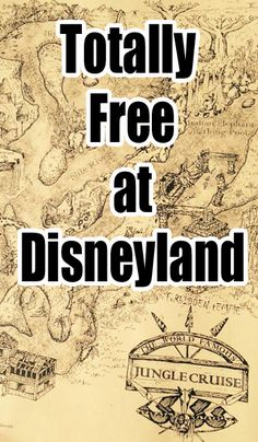 **Awesome**All that you can take home from Disneyland - for free!