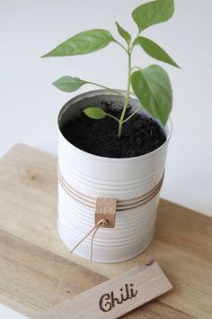 DIY potteskjuler: upcycling af brugte dåser til fine potter Upcycled Home Decor, Laundry Room Design, Diy And Crafts, Planter Pots, Chili, Creative, Projects, Fest, Tins