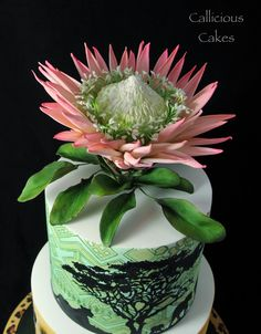 King Protea . All made from Sugarpaste http://www.facebook.com/callicious