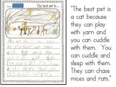 Persuasive writing for Kindergarten!