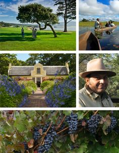 Definitely agree that South Africa, specifically the Western Cape, is Wine Country.