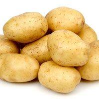 www.geewinexim.com/potato.php - Fresh Yellow Potato Exporters, Suppliers & Wholesalers in India. Potatoes Packing 5 ,10 ,25 ,50 kg Mesh & Jute Bags.
