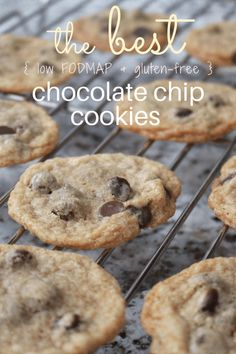 best low fodmap chocolate chip cookies