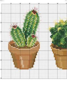 Cross Stitching, Cross Stitch Embroidery, Embroidery Patterns, Hand Embroidery, Cactus Cross Stitch, Cross Stitch Flowers, Cross Stitch Designs, Cross Stitch Patterns, Magnolia Flower