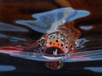 AD Maddox- Snack  #flyfishing  #fly #fishing