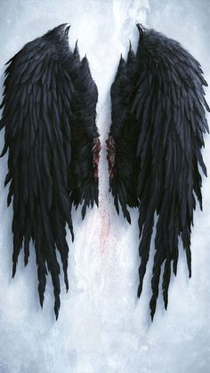 A pair of brutally removed wings. Angel Wings Art, Fallen Angel Wings, Lucifer Wings, Fallen Angel Tattoo, Angel Wings Drawing, Angel Wings Back Tattoo, Tattoo Wings, Tattoo Tribal, Tattoos Skull