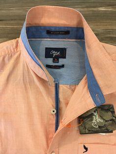 Men shirt detail casual citrus