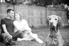 Jasper's joy session by Sarah Beth Photography.