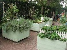 Bildresultat för odla i lådor