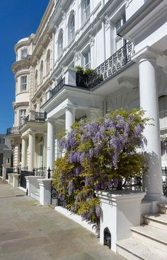 london luxury on a budget townhomes wisteria London Townhouse, London Apartment, Apartment Interior, Holiday Destinations, Travel Destinations, Budget Travel, Travel Tips, Share Accommodation, London Dreams