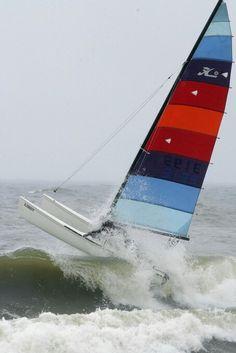 Hobie Cat! love sailing these!