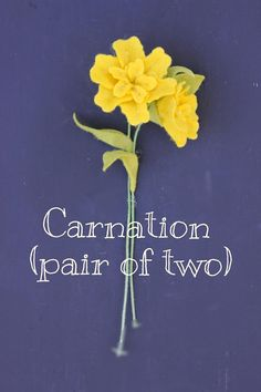 Felt Carnations (Set of Two). Build Your Own Bouquet