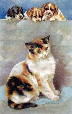 Старинные открытки с котами :: Коты и кошки - рисунок, графика, живопись