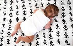 Modern Burlap - organic baby muslin swaddle blanket Tree Hugger