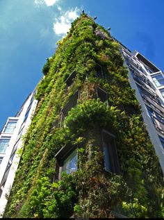 Patrick Blanc's vertical garden in London - so unique.