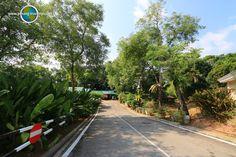 Taman Wawasan is one of the public parks in Putrajaya Putrajaya, Parks, Travel Tips, Asia, Sidewalk, Public, Travel Advice, Side Walkway, Walkway