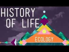 Crash Course Ecology Videos    The History of Life on Earth ---     Population Ecology: The Texas Mosquito Mystery   ---  and 10 more.      http://www.youtube.com/playlist?list=PL8dPuuaLjXtNdTKZkV_GiIYXpV9w4WxbX#