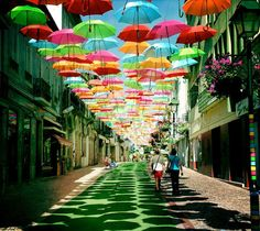 Umbrella Installation in Agueda, Portugal