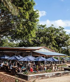 A food lover's guide to the Byron Bay region :: Gourmet Traveller Magazine Mobile Byron Bay Restaurants, Australia Travel, Australia 2017, Australia Funny, Coast Australia, Sydney Australia, Western Australia, The Byron, Beach Holiday