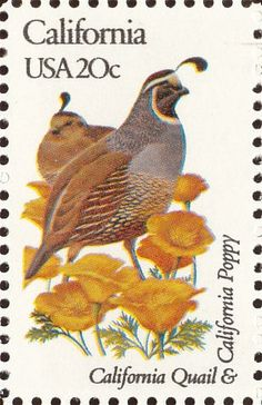 California State Bird and Flower 1982 USA Stamp