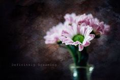 Fine Art Photography- Pink Flowers, Floral Art Photograph, Modern Flower Photography, Floral Wall Art, by DefinitelyDreamingUK on Etsy Still life photography with textures